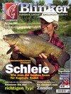 Blinker Magazin